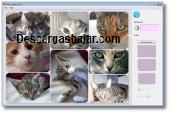 Photo Shapes 0.1.05 captura de pantalla