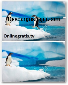 Inpaint windows 5.2 Español captura de pantalla